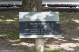 Placa en recuerdo de las victimas de la Guerra Civil